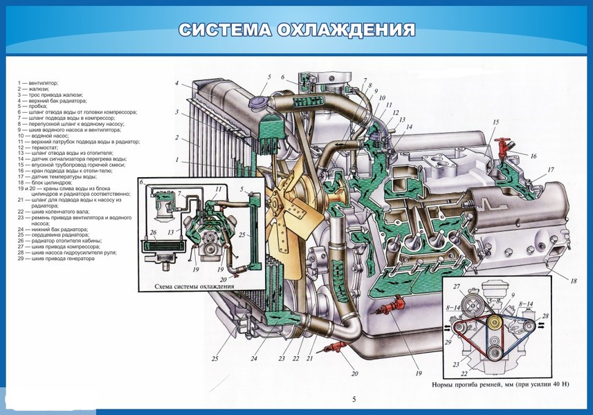 Схема система охлаждения 307